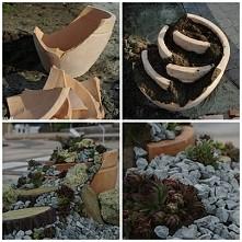 Jak zrobić mini ogród? Zaawansowana technologia hehehe.. :D prosto i efektown...