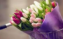 Czuję wiosnę! ;')