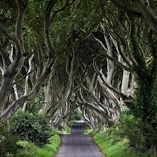 Irlandia...