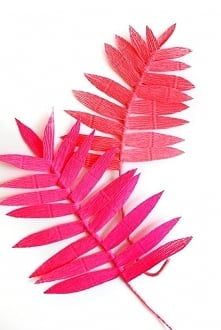 ••colorful crepe paper ferns