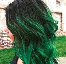 Miał ktoś zielone włosy? polecacie?