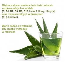 Aloesowe ciekawostki :)