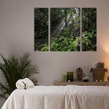 Piękny obraz o intensywnie zielonej kolorystyce. Dekoracja wprawia w relaksujący nastrój, polecamy do upiększenia ścian w gabinetach kosmetycznych.