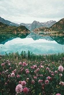 Norwegia ❤