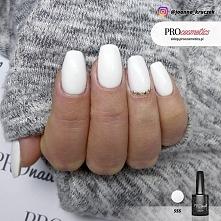 Białe paznokcie hybrydowe / żelowe pomalowane przy użyciu białego lakieru hyb...