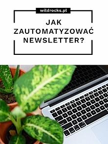 Jak zautomatyzować newsletter na blogu?