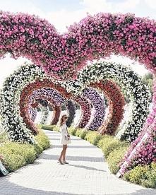 Dubai Miracle Garden!
