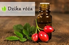 dzika róża - naturalne źródło witaminy C