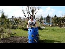 Jak uprawiać truskawki w beczce | www Kasia in