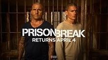 Jak wrażenia po powrocie Prison break? :) ja jestem zaskoczona dalszymi losam...