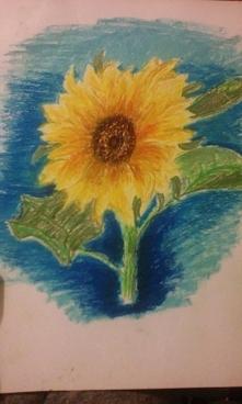 Słonecznik pastelami olejny...