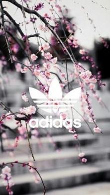 Oryginalne kwiaty :)