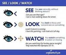 See/ Look/ Watch
