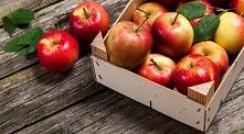 jabłka - dlaczego warto jej jeść?