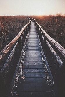 Ciekawe dokąd prowadzi ten mostek :)