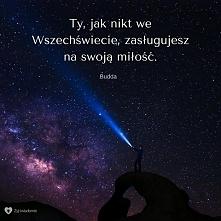 Budda powiedział dziś do mnie :-)