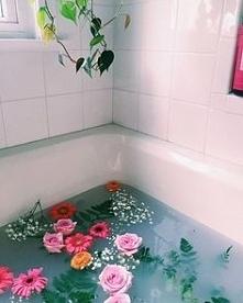 Kwiaty Kwiaty Kwiaty ! żałuję, że to nie u mnie. Mój pokój jest wypełniony kw...