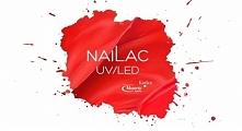 Kochani, już od 4 maja w Kielcach SPN i NaiLac w jednym miejscu!!! Tyyyyle wspaniałości :) prawie 400 kolorów (a żaden z nich się nie powtarza <3 ) będzie na Was czekać w Skl...