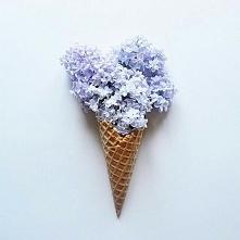 gdzie ta wiosna?! :o