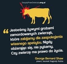 George Bernard Shaw - pierwsza osoba uhonorowana Oscarem i Nagrodą Nobla.