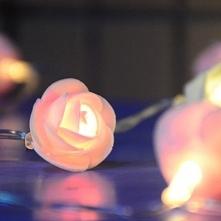 Świecące róże LED - Ekotechnik24.pl