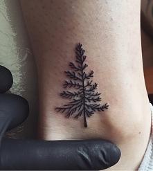 drzewko tattoo