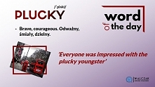 Are you plucky?