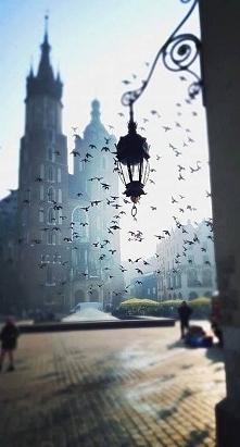 Wow jakie ten mój Kraków jest piękny. Znów mnie zaskoczył:-)