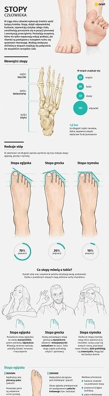 rodzaje stóp