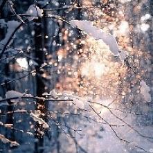 Zima jest piękna :)