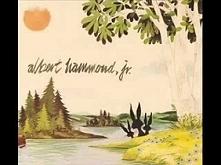 Albert Hammond Jr. - Hard t...