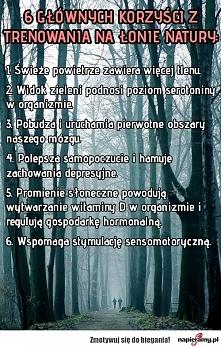 napieramy.pl /korzysci-z-trenowania-na-lonie-natury/