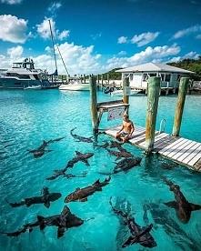 Bahamy :)