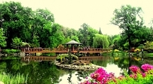Numer 3! <3 Z ogrodu udamy się jeszcze do innego ogrodu. Chciałabym pokazać mamie Ogród Japoński we Wrocławiu, który mnie zauroczył i wywołał dużo uśmiechu! Chcę sprawić tym ...