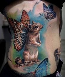 motyl i wiewiórka