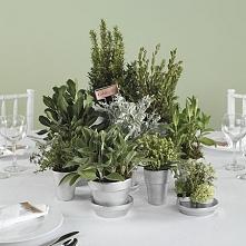 Portal Weselnapolska/blog Prezenty dla gości weselnych, podziękowania za przy...