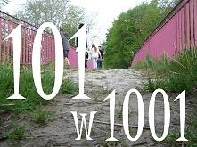 Możliwe, że już słyszałaś o tym wyzwaniu. Możliwe, że jeszcze nie. 101 w 1001...