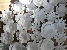papierowe kwiaty,wykonam na zamówienie