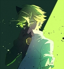 ChatNoir/Adrien