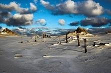 Wydma Łącka (woj. pomorskie)- największa wydma w Słowińskim Parku Narodowym, jej wysokość sięga do 42 metrów, należy do wydm ruchomych. Jest to niezwykłe miejsce gdzie można odn...