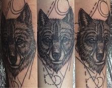 wolf c.d.n.