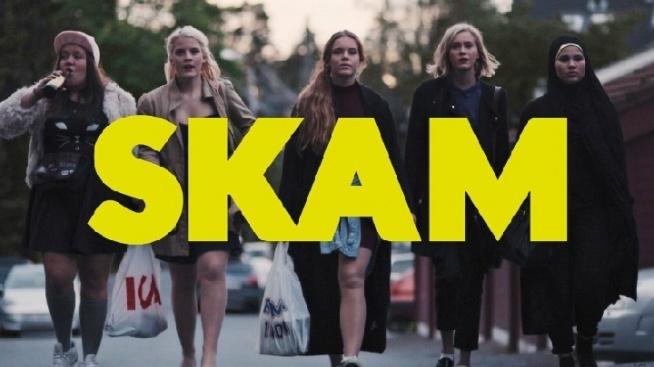 SKAM (2015 - 2017) - Serial opowiada o trudnościach, skandalach i codziennym życiu młodzieży oraz uczniów liceum w Oslo. Co sezon fabuła skupia się na innym bohaterze.  Nie jest to kolejny amerykański serial o wyidealizowanych nastolatkach. Porusza tematy z życia codziennego, ale również temat homoseksualizmu, religii. Polecam zarówno dorosłym jak i młodzieży, chłopakom oraz dziewczynom. :)