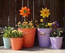 Kwiatowe dekoracje na podworku