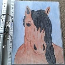 rysunek konia jak mi wyszed...