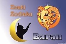 BARAN – ZNAK ZODIAKU (21 marca – 19 kwietnia)  Hasło astrologiczne: JA JESTEM...