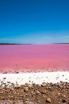 Różowe jezioro Hillier w Australii.
