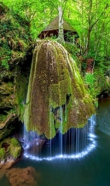 Park Narodowy, Rumunia.