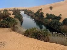 #oaza