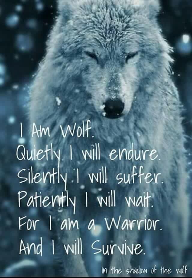 I am wolf ...