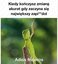 buahahahahahah
